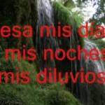 Ricardo Montaner Besame