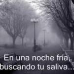 Alejandro Fernandez Se me va la voz